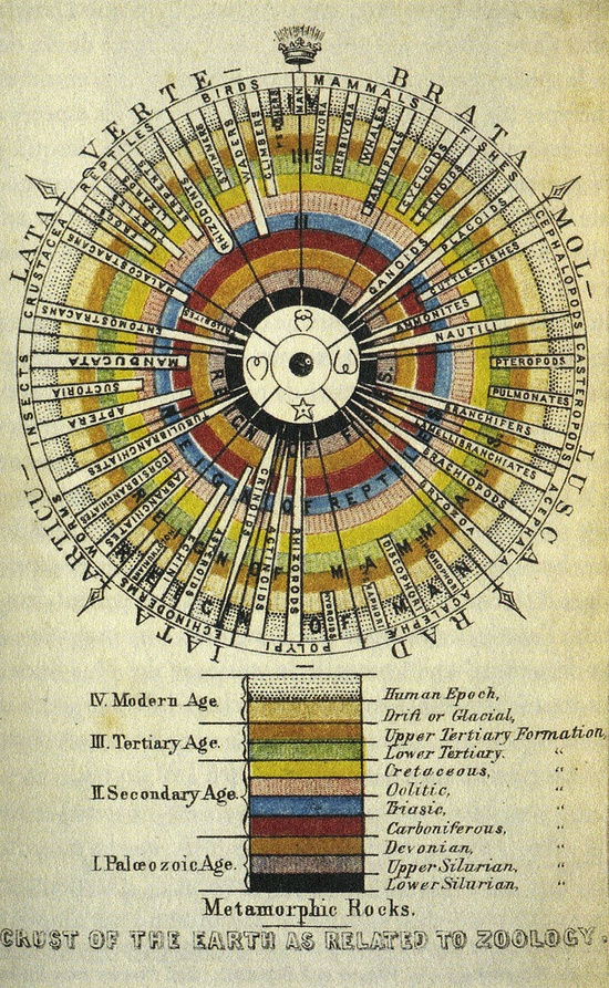 Earth's crust with the evolutionary history of the species @Wayne Stratz    j.l. agassiz - 1851