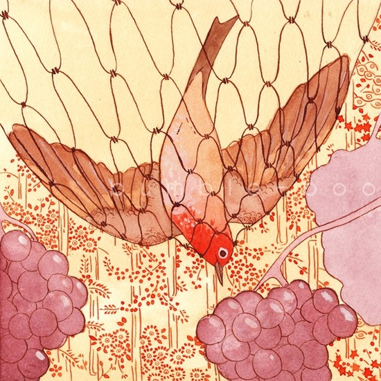 netted bird