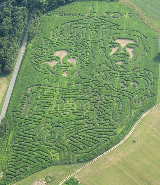 Amazing 50th anniversary gift: A corn maze of their wedding photo