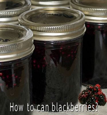 #1 Cooking Recipes Resources: How to can blackberries?