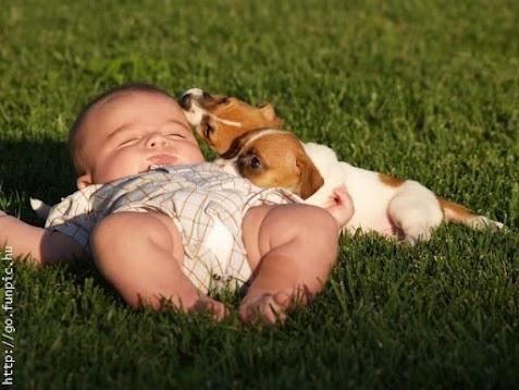 baby doogs sleep