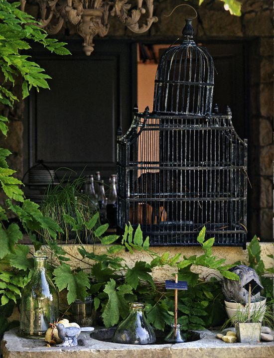 birdcage. #gardens, #home, #design