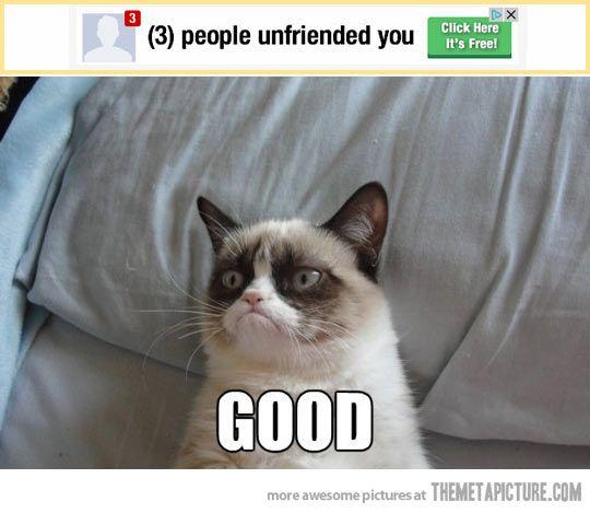 Grumpy Cat. Unfriended. Good.