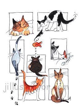 Cats attitudes. Truth