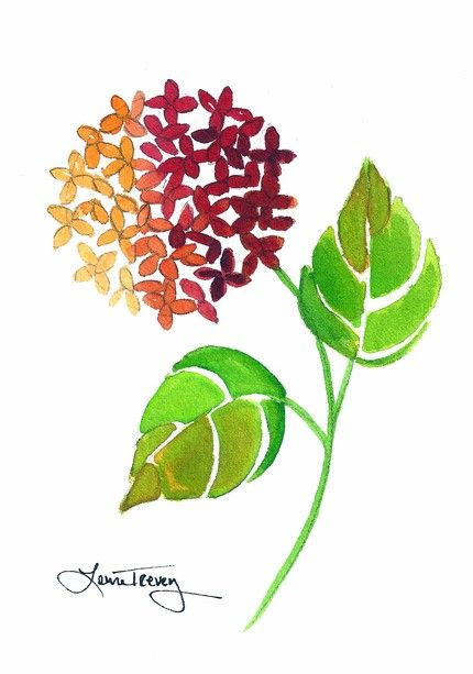 Summer Hydrangea: watercolor painting