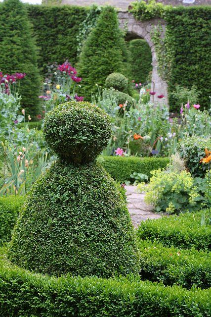 topiary in garden