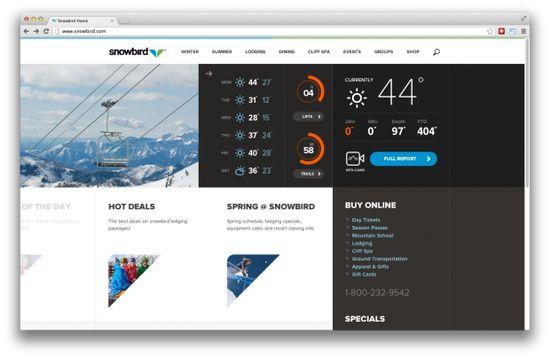 Snowbird Homepage UI Design