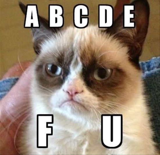a b c d e f u - grumpy cat love