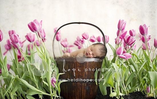 Okay-- this is not a one year old, but such a gorgeous newborn shot!