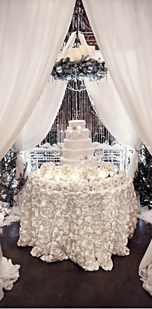 Winter Wedding ? Cake Table