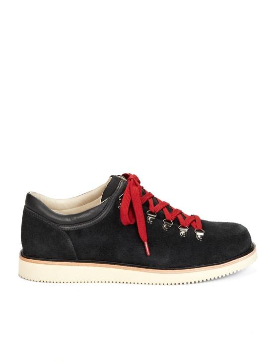 Alpine boot shoe