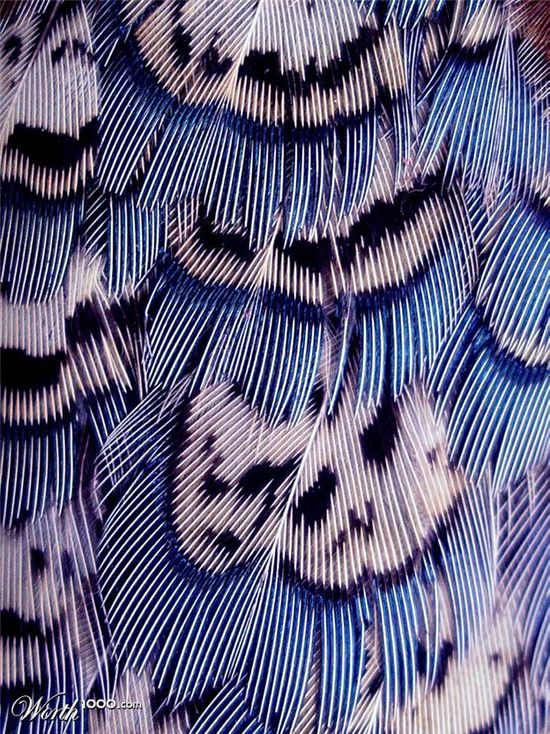 #EPiC #patternplay #fun #interesting #bold #design #unique