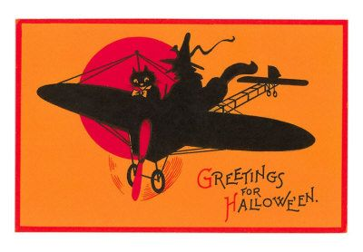 halloween, black cat & witch on an airplane