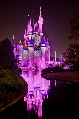 Stay in Cinderella's Castle in Disney World... Also one can never have TOO many pics if the Castle!