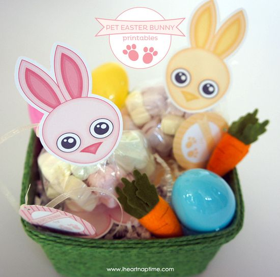 Pet Easter Bunny Printables ... cute idea for the baskets!