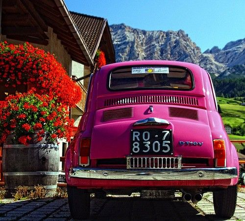 :) Hot pink vintage miniature car, red flowers, green green grass, blue skies. A very happy, colorful photo!