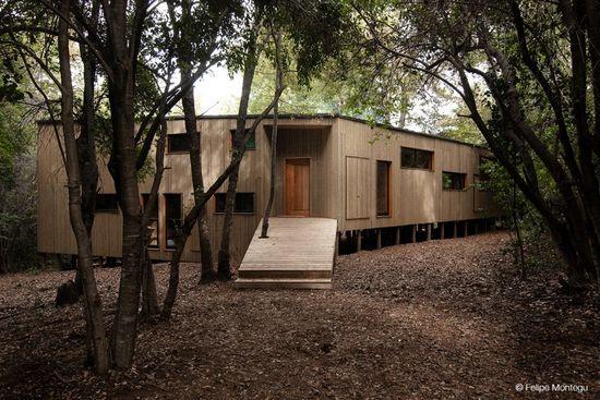 House La Invernada / Felipe Montégu