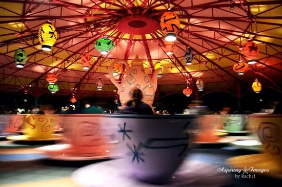 Disney Teacups Magic Kingdom