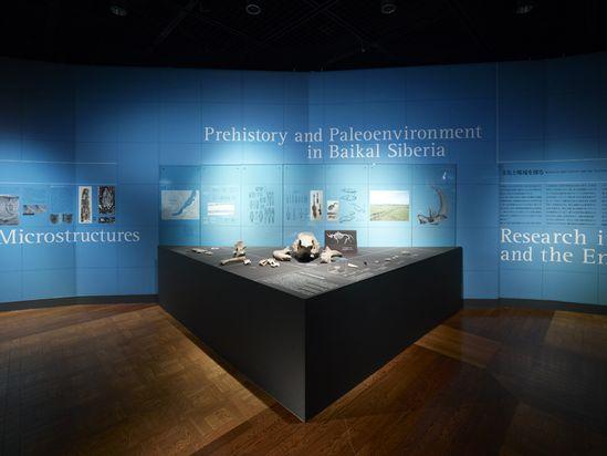 Archaeometria by Nakano Design Office