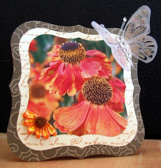 handmade card ... shaped card with layers ... top layer is a photo of gorgeous flowers  ... butterfly embellishment stamp on clear acetate and glittered ... Hero Arts ... luv this ide for using photos ...