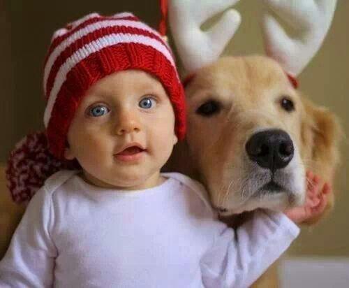 Christmas Baby & Dog