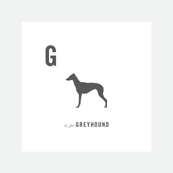 G is for greyhound