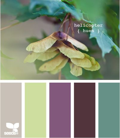 Design Seeds colour palettes!