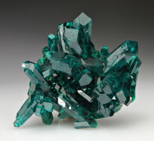 mineralia:    Dioptase from the Congo