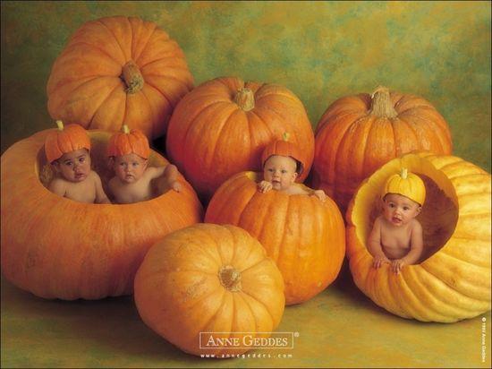 Anne Geddes Cute Baby wallpapers
