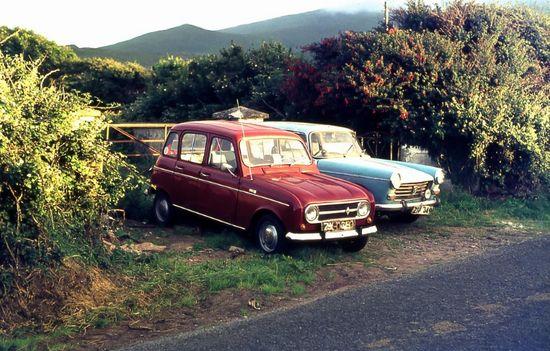 Future family cars