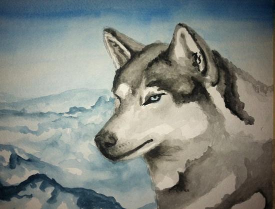 Husky Original Watercolor Animal Art  Affordable Art  by SamIamArt, $25.00