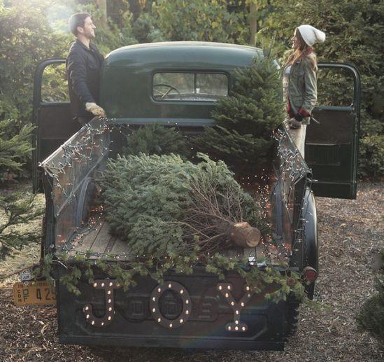 christmas tree day!