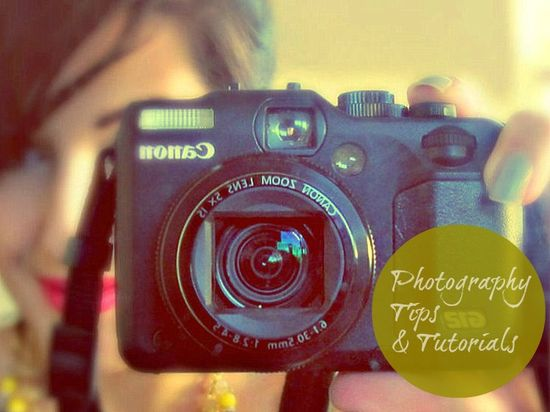 DIY round up #2 - the photography edition - Makeup and Macaroons
