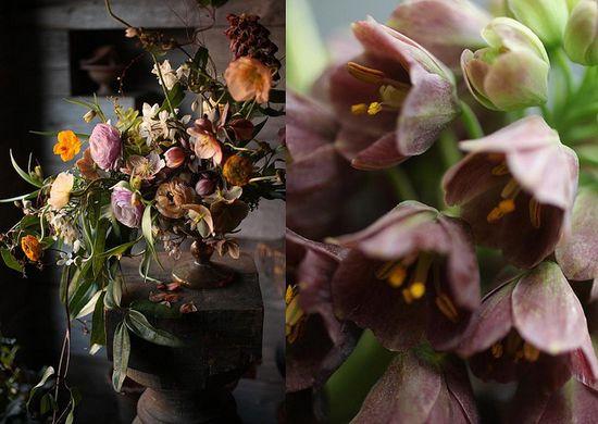 early spring by Sarah Ryhanen, via Flickr