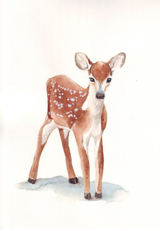 Deer Painting  print of watercolor painting  5 by by Splodgepodge, $15.00