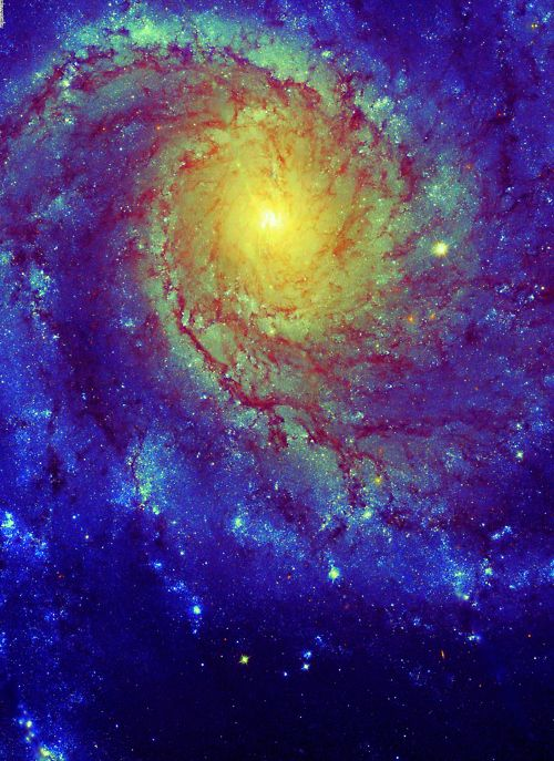 M101...........Nature and beyond