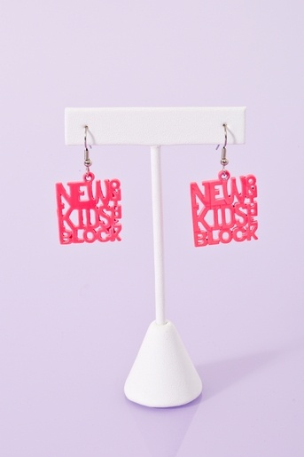 New Kids On The Block Earrings   ? Well I guess it's a brand new day after all ?
