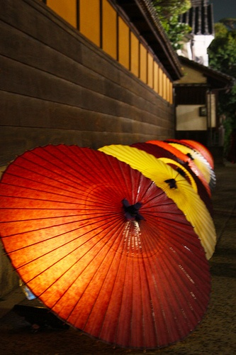 Umbrellas in row