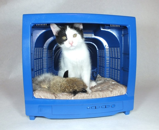 Modern Pet Bed Furniture Blue  Recycled