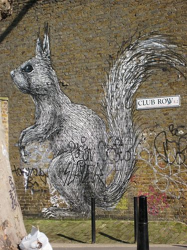 Squirrel in London.