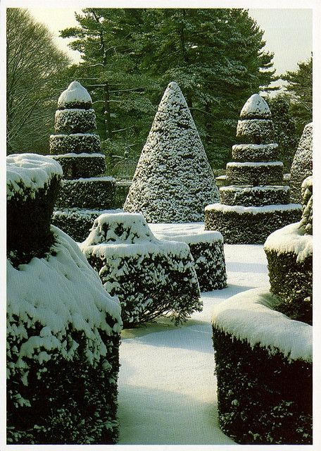 Longwood Gardens in Winter. I love gardens that have shape and interest in winter.