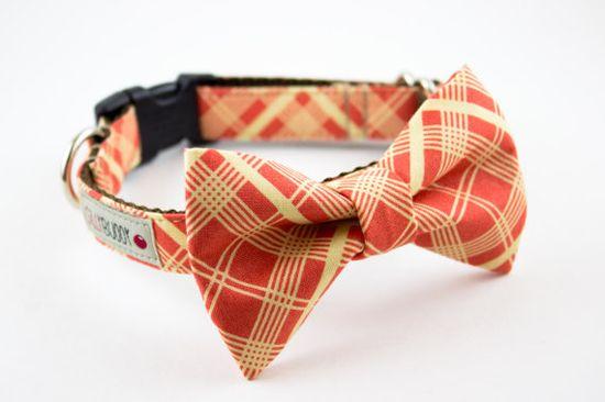 Orange Vintage Plaid Bowtie Dog Collar by SillyBuddy on Etsy, $43.00