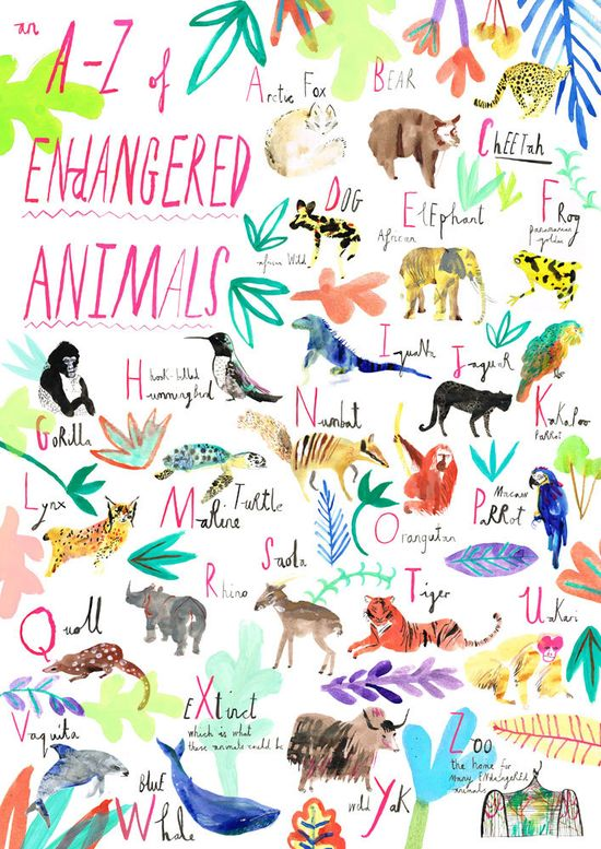 An A-Z of endangered animals.