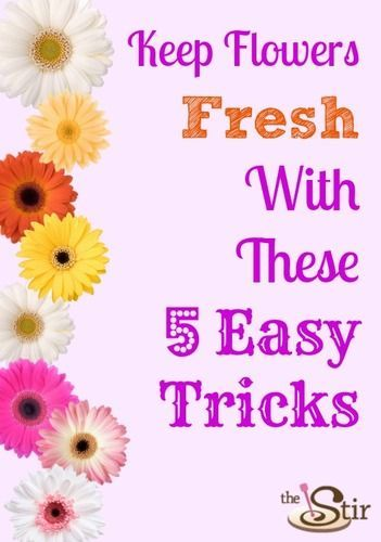 Love these simple tips. Now someone go pick me some flowers!