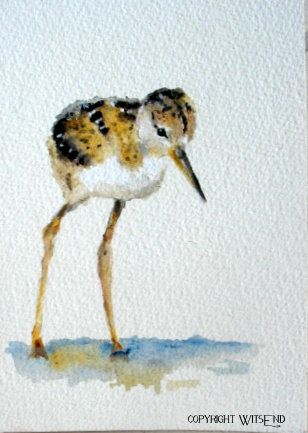 """""""STILTS"""", Baby shore Bird watercolor painting original art. by WitsEnd, via Etsy. SOLD"""