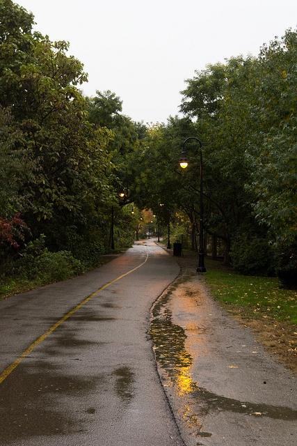 Fall rain on the bike path.