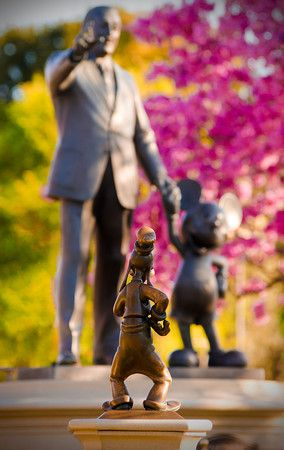 5 Indispensable Tips for Great Vacation Photos - use these to get better Disney photos!