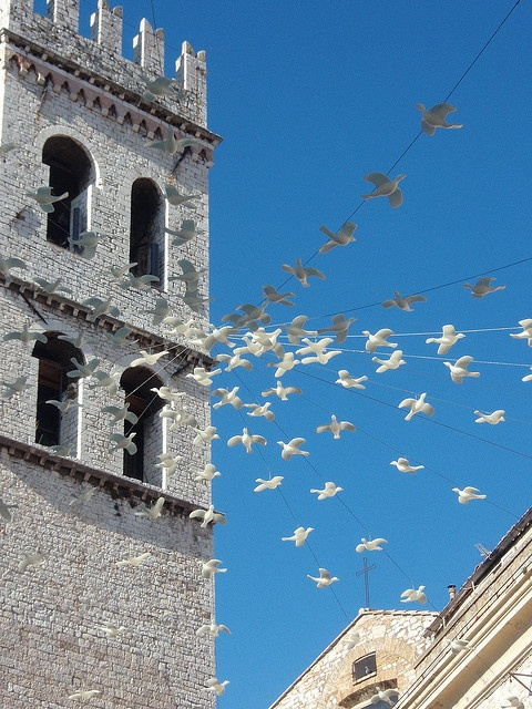 The peace doves at Assisi, Italy