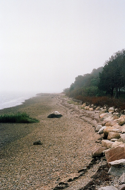 cape cod...i love this place :)