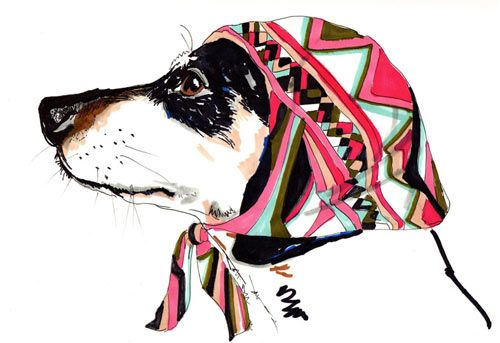 Dogs in Pucci scarves. LOVE IT.